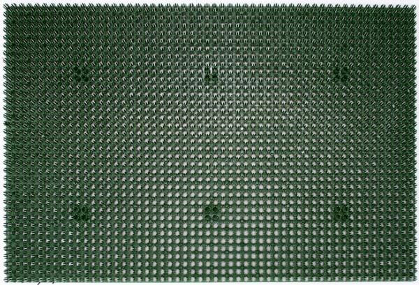 Allwettermatte Season von Golze 40x60cm in grün