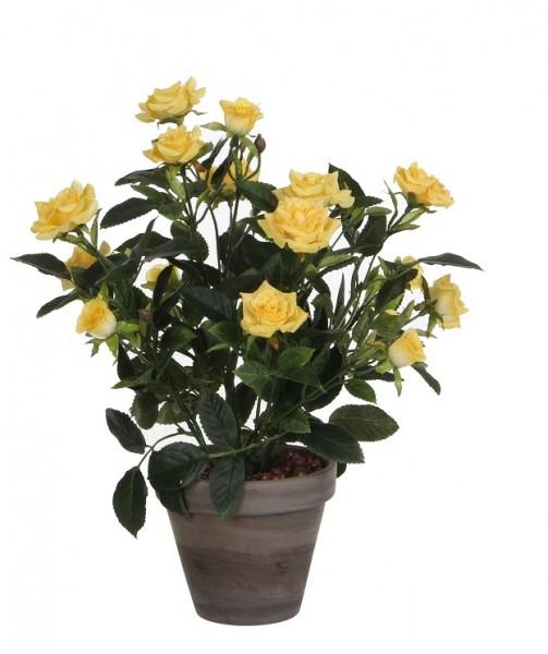 Rosenstrauch gelb 33cm