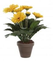 Mica Gerbera gelb 30cm