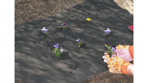 Mr Gardener Unkrautvlies 0,9x10m Anwendung