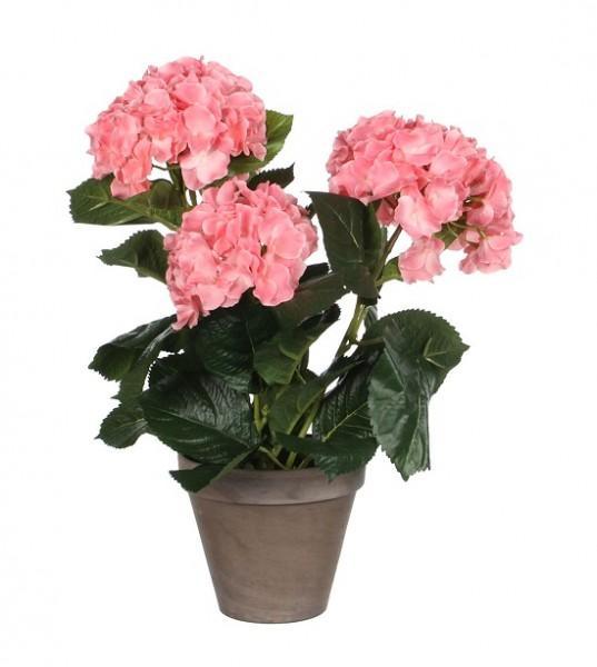 Mica Hortensie rosa 40cm