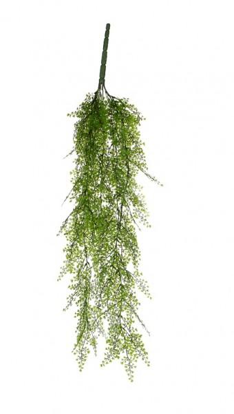 Mica Zypresse hängend 95cm
